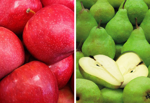 What's in Season? Apples and Pears
