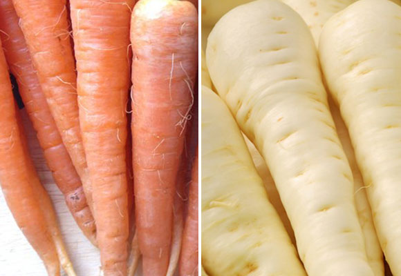 What's In Season – Carrots and Parsnips